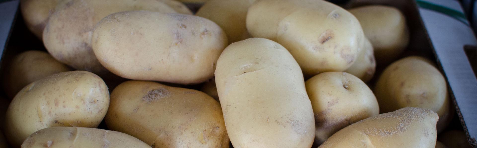 Patatas de Sanlúcar